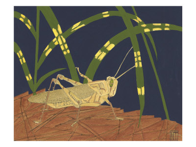 Ornamental Grasshopper I
