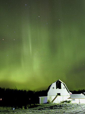 Northern Lights Dance across the Sky Near Palmer, Alaska