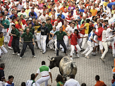 Hundreds Look at a Bull That Gored a Reveler During the Running of the Bulls at San Fermin Fiestas