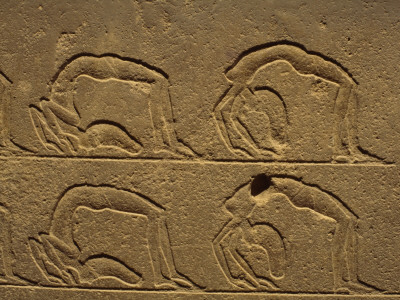 Petroglyphs on a Wall, Luxor, Karnak, Egypt