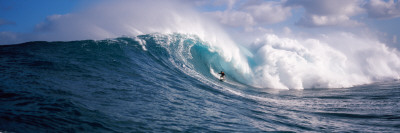 Surfer in the Sea, Maui, Hawaii, USA Posters