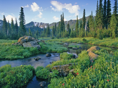 Picnic Creek in the Jewel Basin of the Swan Mountain Range, Montana, USA