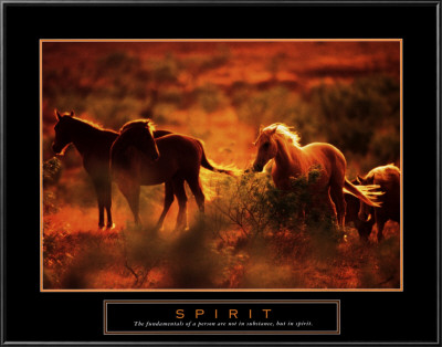 Spirit: Horses