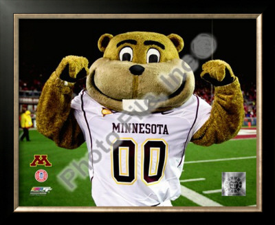Mascot Goldy University of Minnesota Golden Gophers 2008