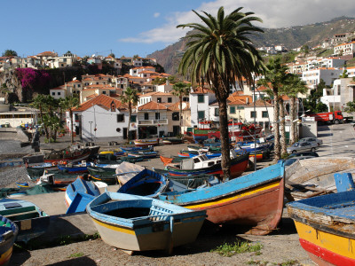 Fishing Boats at Camara De Lobos ...