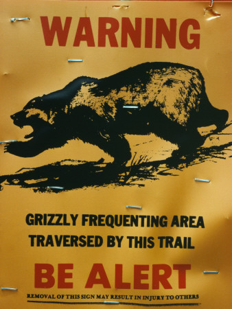 Grizzly Bear Warning Sign, Yellowstone Np, Usa