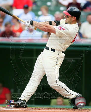 Travis Hafner 2010 Action