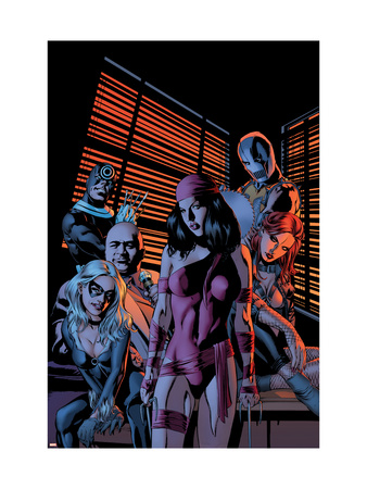 House Of M: Avengers #4 Cover: Elektra and Black Cat