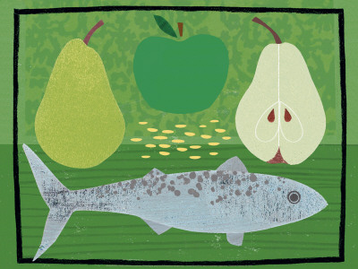 Pear, Apple and Fish - Art Print