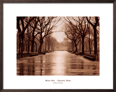 Rainy Day, Central Park Framed Art Print