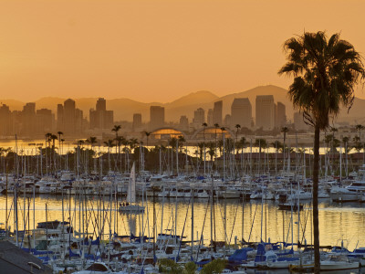 Yachts across San Diego Bay at Sunrise, Looking Towards Downtown Photographic Print