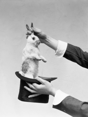 Hands of Magician Performing Magic Trick, Pulling Rabbit Out of Top Hat