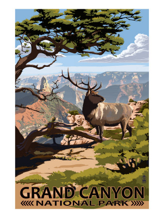 Grand Canyon National Park - Elk & Point Imperial