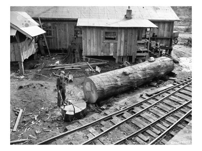 Cutting Kindling, Linco Log and Lumber Company, 1920