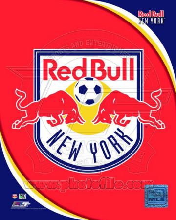 Buy 2011 New York Red Bulls Team Logo at AllPosters.com
