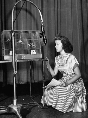 Shirley Temple Taking Part in a Radio Show for Servicemen Overseas