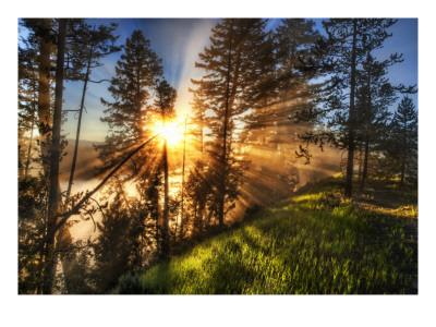 'Morning. Coffee. Yellowstone. Fog.' by Trey Ratcliff