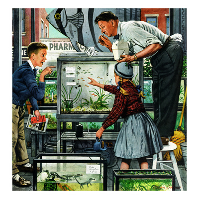 &quot;Fish Aquarium&quot;, October 30, 1954