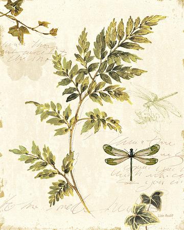 Ivies and Ferns III - Art Print