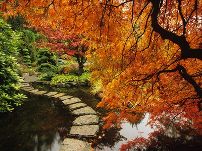 Autumn Colors in Butchart Gardens, Victoria, Vancouver Island, British Columbia, Canada