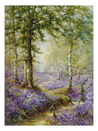 The Bluebell Wood Posters