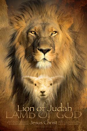 Judah Lion Sports Poster