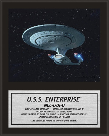 Star Trek - Enterprise NCC-1701-D Art Plaque