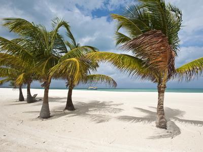 Isla Pasion (Passion Island) Off ...