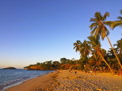 Palm Trees on Sandy Beach of Andilana on Nosy Be, Madagascar, Indian Ocean, Africa
