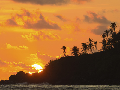 Sunset and Palm Trees on the Western Point of the South Coast Surf Beach at Mirissa, Near Matara, S