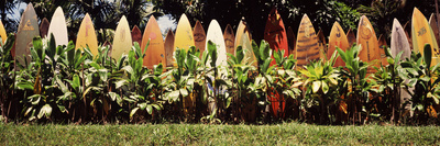 Surfboard Fence in a Garden, Maui ...