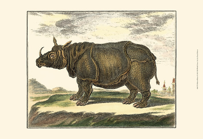 Diderot Rhino