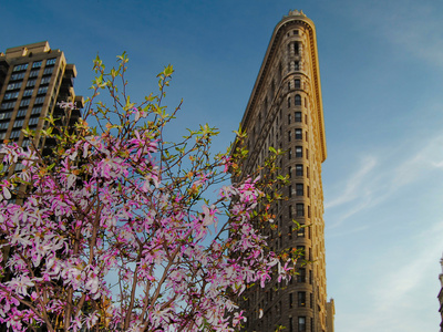 Flat Iron Building in the Spring ...