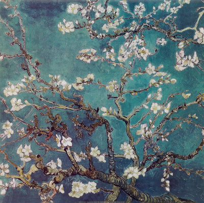 Almond Branches in Bloom, San Remy, c.1890 Poster