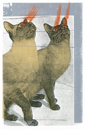 Lazer Cats Serigraph