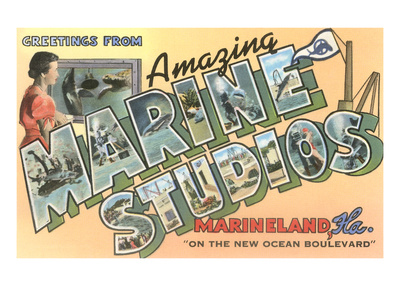 Greetings from Marine Studios, Florida