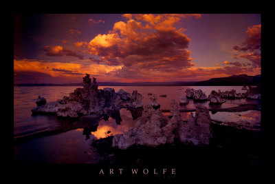 Sinter im Mono Lake, Kalifornien