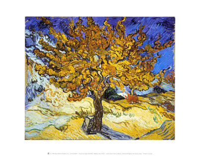 Mulberry Tree, c.1889 Art Print