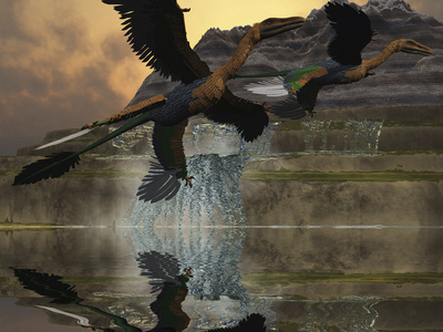 Two Microraptor Dinosaurs Fly Near Mountain Waterfalls in Prehistoric Times