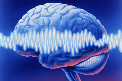 Drawing of brain on blue background with EEG waves superimposed