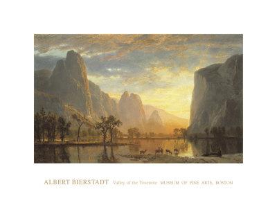 Valley of the Yosemite Art Print