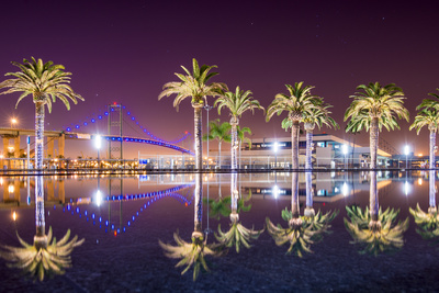 Vincent Thomas Bridge and Palm Tree ...