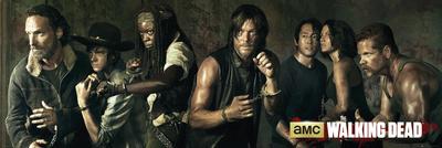 Walking Dead - Season 5 Television Door Poster
