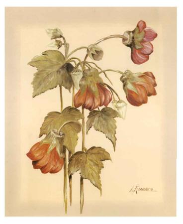 Flores Colgantes IV Art Print