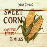 Fresh Picked Sweet Corn Art Print