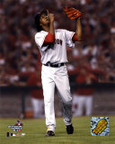 Pedro Martinez after striking out Angel's Figgins, 7th inning of the 2004 ALDS, Game 2