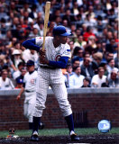 Ernie Banks - Batting Stance