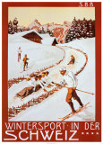Winter Sport in Der Schweiz Art Print