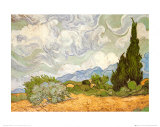 Buy Wheatfield with Cypresses, c.1889 at AllPosters.com