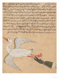 Merchant from Isfahan Flying, from the Wonders of the Creation and the Curiosities of Existence